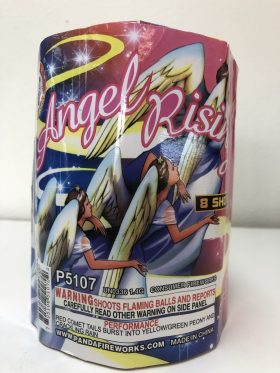 Angel Rising