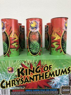 King of Chrysanthemum
